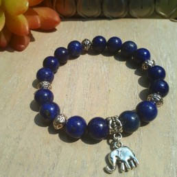Elephant and Lapis Lazuli